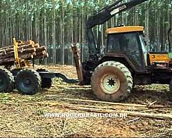 Mini skidder a venda