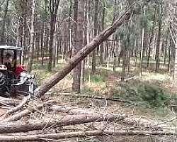 Empresa pinça florestal para tratores