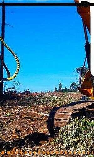 Destocador de troncos