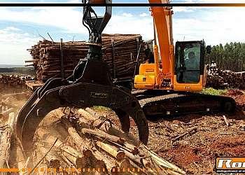 Distribuidor pinça florestal para grua